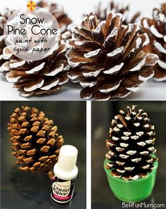 Use Liquid paper to paint snow pine cones to decorate the house at Christmas time. #christmas #pinecone #craft