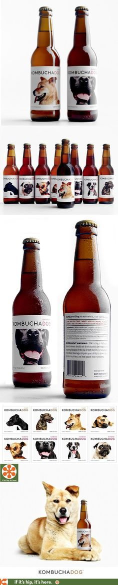 Bottles of Kombucha that feature dogs available for adoption, Lovely Package, Creative Packaging Design sample Made By LogoPeaple Australia