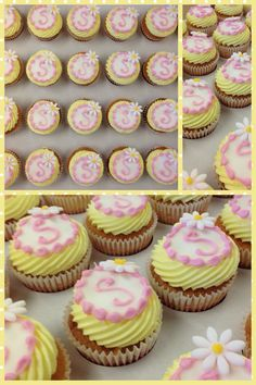 Yellow cupcakes,