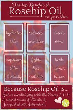 rosehip oil skin infographic