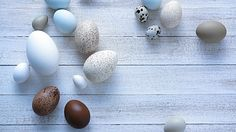 so many varieties Living At Home, Decoration Table, Bunt, Easter, Stud Earrings, Food, Holidays, Interesting Facts, Make Your Own