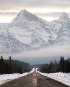 Icefields Parkway  Alberta Canada   |  Jacob Moon
