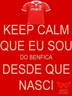 Benfica Wallpaper, Image Fun, Football, Cool Stuff, My Love, Wallpapers, Eagle Pictures, Volleyball, Personality