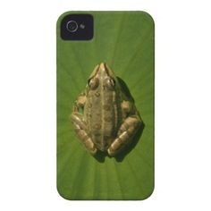 it's a frog world iPhone 4 Case-Mate case