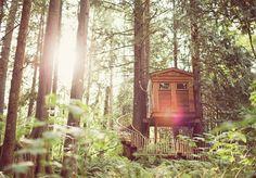 15 Romantic Tree House For Wedding Ideas