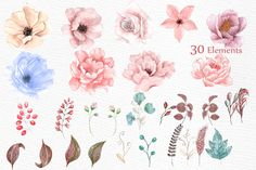 Watercolor wedding flowers by LeCoqDesign on Creative Market