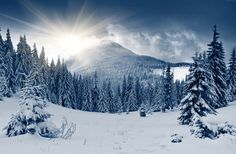 winter forest Wallpaper, Nature / Forest: winter forest, mountain ...