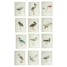 Wading Bird Paintings, Set of 12, OKA