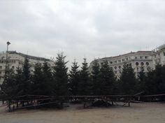 Το Χριστουγεννιάτικο δάσος στη Θεσσαλονίκη είναι παραμυθένιο και μαγικό!  - http://ipop.gr/themata/vgainw/to-christougenniatiko-dasos-sti-thessaloniki-einai-paramuthenio-kai-magiko/