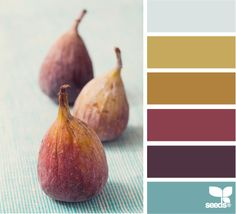Color inspiration - fig hues