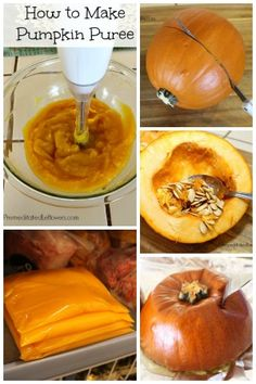 How to Roast a Pumpkin and How to Make Pumpkin Puree: Easy tips for roasting pumpkin. How to make pumpkin puree from scratch & freeze it to use in recipes. Makes a great squash casserole with spices added. Thanksgiving Recipes, Fall Recipes, Holiday Recipes, Pumpkin Recipes To Freeze, Baby Food Recipes, Dessert Recipes, Desserts, How To Make Pumpkin, How To Roast Pumpkin