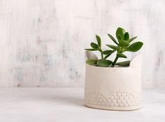 50,90 eur White Ceramic planter , modern Succulent planter , large winged  Vase , home decor dots & spirals patterned  Vase