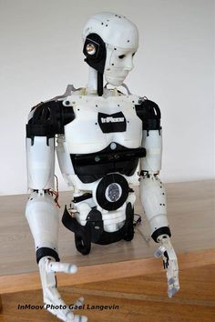 Image result for inmoov robot