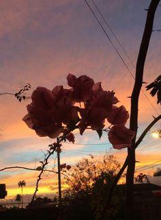 24.03.15  sunset in trinidad!