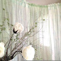 Green Lace Backdrop 6 ft Wide Lace Backdrop by DenaDanielleDesigns