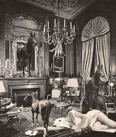 When going through Toshiko Okanoue's work (born in in Kochi), one can easily relate her style and dreamy aesthetic to the Surrealist Movement in Japan However, it was not until Collages, Collage Art, Photomontage, Masterpiece Theater, Japanese Photography, Max Ernst, Collage Vintage, Make Pictures, Animal Decor