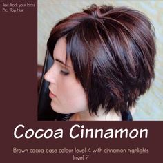 Cocoa Cinnamon Hair Color in Fall Hair Colors For Short Hair collection - HairSimply Hair Color And Cut, Haircut And Color, Color For Short Hair, Hair Color Ideas For Brunettes Short, Short Hair Cuts For Women, Short Hair Styles, Cinnamon Hair Colors, Layered Bob Hairstyles, Shaggy Hairstyles