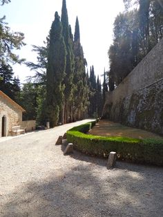 Discovering the history and the wines of Barone Ricasoli