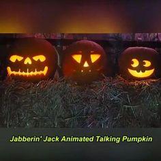 Halloween Sounds, Halloween Party Decor, Halloween Crafts, Happy Halloween, Outdoor Halloween Parties, Halloween Night, Scary Outdoor Halloween Decorations, Halloween Yard Ideas, Halloween Outside