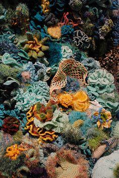 the hyperbolic crochet coral reef cichlids fish fish fish Betta reefs aquarium fish fish sharks Crochet Fish, Freeform Crochet, Crochet Art, Crochet Geek, Textile Texture, Textile Fiber Art, Textiles, Yarn Bombing, Ocean Creatures