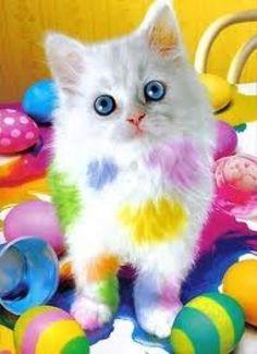 couleur multicolore - Page 6