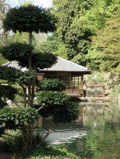 Japanese Garden in Kaiserslautern, Germany