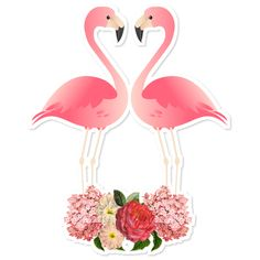 Shop for unique nursery art like the Flamingos in Love Throw Pillow by julianazimmermann on BoomBoomPrints today! Flamingo Birthday, Flamingo Party, Printable Stickers, Planner Stickers, Tumblr Stickers, Tropical Party, Journal Cards, Cute Wallpapers, Decoupage