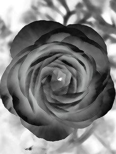 KunSTrich - Rose schraffiert von                      ღஐƸ̵̡Ӝ̵̨̄Ʒஐღ        *DAKETO*         ღஐƸ̵̡Ӝ̵̨̄Ʒஐღ auf DaWanda.com