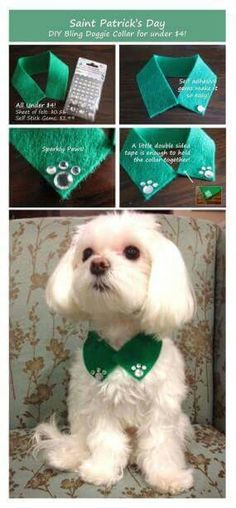 Saint Patrick's Day Inspired DIY Bling Doggie Collar Pretty Gossip easy to make St Patrick s Day Bling Dog Collars, Diy Dog Collar, Dog Clothes Patterns, Dog Crafts, Dog Items, Dog Bows, Pet Grooming, Grooming Salon, Pet Clothes