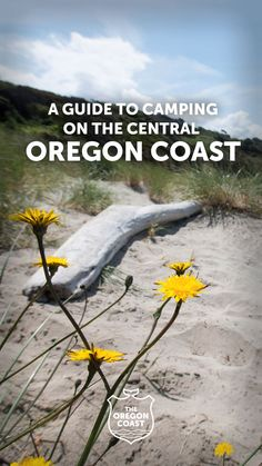 Oregon Vacation, Oregon Road Trip, Oregon Travel, Rv Travel, Road Trips, Travel Guides, Oregon Usa, Central Oregon, Oregon Coast