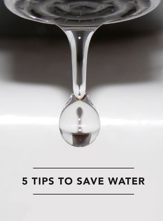 Ideas to save water in your home