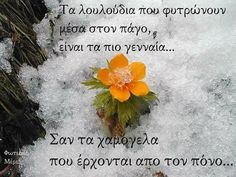 Greek Words, Greek Quotes, Life Lessons, Picture Video, Wise Words, Poems, Beautiful Pictures, Life Quotes, Inspirational Quotes