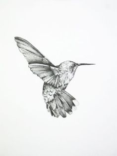 A beautiful drawing of a hummingbird.   Artist unknown.
