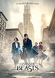 Directed by David Yates. With Eddie Redmayne, Katherine Waterston, Alison Sudol, Dan Fogler. The adventures of writer Newt Scamander in New York's secret community of witches and wizards seventy years before Harry Potter reads his book in school. New Movies, Good Movies, Movies And Tv Shows, Film Fantastic, Alison Sudol, Gellert Grindelwald, Nova Era, Fantastic Beasts And Where, Fantastic Beasts Poster