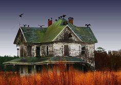 Buzzards' House, Maryland