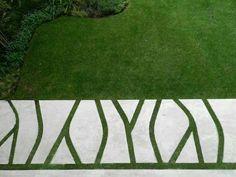 Grass Texture Seamless Google Search Landscape
