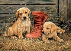 Paint by Number Kit - Barnyard Puppies and Boots. A great Christmas Gift! by OurPaintAddictions Something Old Something New, Paint By Number Kits, Labrador Retriever Dog, Lab Puppies, Cross Paintings, New Puppy, Dog Life, Animal Drawings, Cross Stitch Patterns