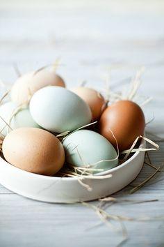 The Green Easter Basket (Bare Beauty) Easter Table, Easter Eggs, Duck Egg Blue, Duck Eggs, Chicken Eggs, Fresh Chicken, Easter Baskets, Happy Easter, Coco