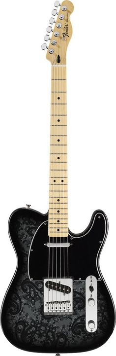 Fender Telecaster Black Paisley. Only dream guitar in my price range. Too bad Musicians Friend had to ruin that.