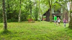 Rockwood Lodges | Accommodation Howick Lodges, Places To Visit, Plants, Cabins, Plant, Chalets, Planets
