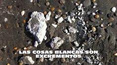 Una solución para la playa de Costacabana. Vídeo 2.