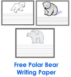 bears facts and information biology essay Polar bear research at the alaska science center publications.