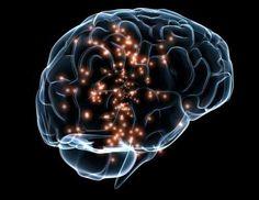 A brain wide chemical signal that enhances memory