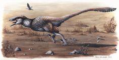Emily Willoughby | Meet Dakotaraptor, the giant dromaeosaur from Hell Creek!