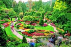 Just one of the 50 most beautiful gardens in the world