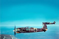 "Beautiful color image of German Focke-Wulf Fw 190A-5 fighters,of Fighter Squadron JG54, during flight. The photo is dated ""1943"" with no other detail.  Powered by a radial engine, the FW190 had ample power and was able to lift larger loads than its well-known counterpart, the Messerschmitt Bf 109. The 190 was used by the Luftwaffe in a wide variety of roles, including day fighter, fighter-bomber, ground-attack aircraft and, to a lesser degree, night fighter."