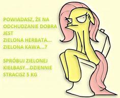 zielona herbata Haha, Funny Pictures, Jokes, Humor, Comics, Funny, Fanny Pics, Husky Jokes, Ha Ha
