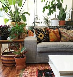Share your home with plants