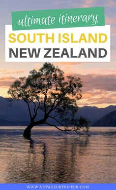 Ultimate 2 Week South Island New Zealand Itinerary I places to go in New Zealand I where to go in New Zealand I New Zealand travel I things to do in New Zealand I South Island itinerary I itinerary for New Zealand I what to do in New Zealand I New Zealand attractions I places to visit in New Zealand I New Zealand destinations I destinations in New Zealand I #NewZealand #travelguide New Zealand Attractions, New Zealand Destinations, New Zealand Itinerary, New Zealand Travel Guide, Beautiful Places To Travel, Cool Places To Visit, Places To Go, Visit Australia, Australia Travel