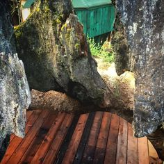 #salmoncreekfarm showers in the ancient redwood stump